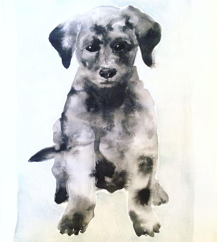 Black Dog Watercolour - Ingjerd Tufto Instagram @intu