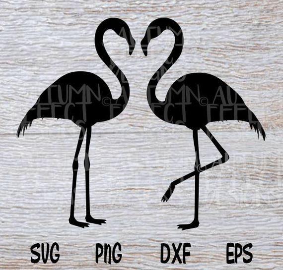 Flamingo Svg Flamingo Silhouette Flamingo Png Bird Etsy In 2020 Flamingo Png Svg