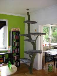die besten 25 katzen spielplatz ideen auf pinterest katzen wand katzen wandregale und diy. Black Bedroom Furniture Sets. Home Design Ideas