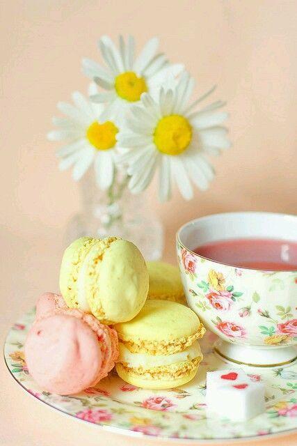 Pretty Pastel Macaroons..