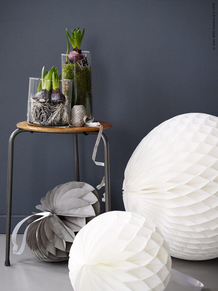 Hyacinter i enkla CYLINDER vaser i olika storlekar och VISIONÄR dekoration skapar ett stämningsfullt stilleben. Stylist: Pella Hedeby