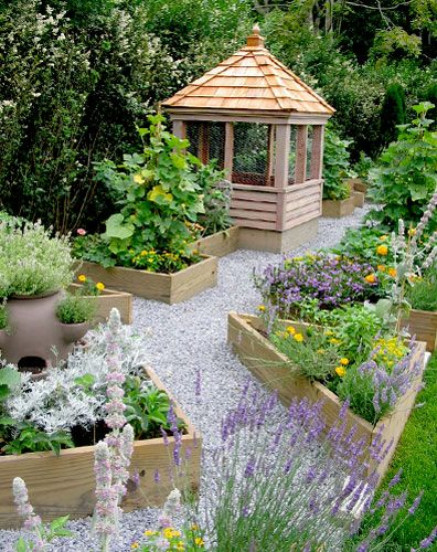 98 best images about vegetable garden enclosures on for Stylish vegetable garden