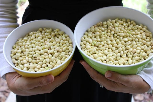 Southern zipper cream peas recipe