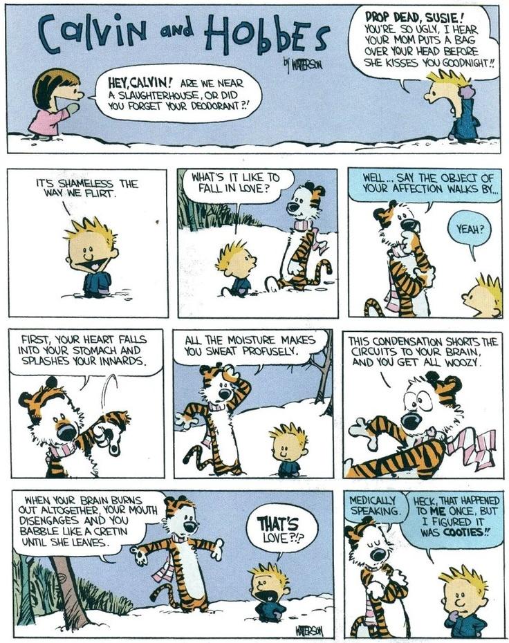 calvin and hobbes comics pdf