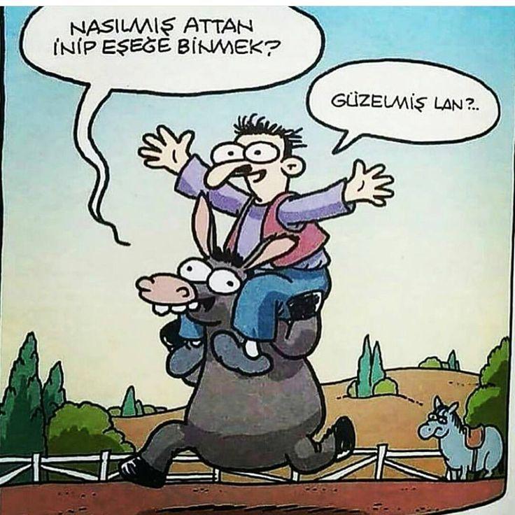 - Nasılmış attan inip eşeğe binmek? + Güzelmiş lan?.. (Kaynak: Instagram - karikatur_deposu) #karikatür #mizah #matrak #komik #espri #şaka #gırgır #komiksözler