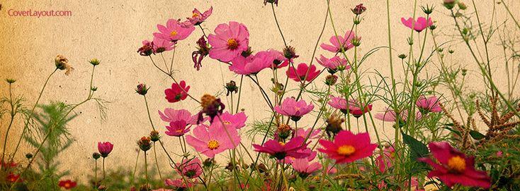 Gallery for flower vintage timeline covers facebook