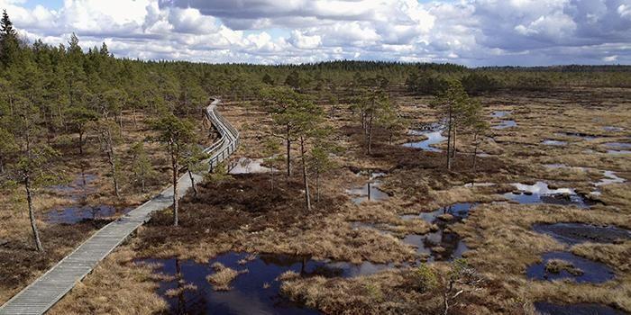 Mustasaarenkeidas Isojoki, Finland.