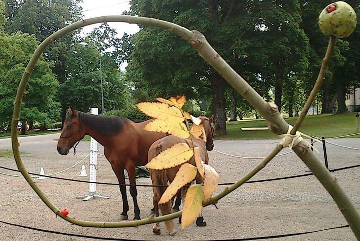 Prova på personlig utveckling med hästar i Ockelbo, sommaren 2013