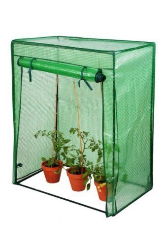 Lacewing 3ft1 x 1ft8 Reinforced Tomato Greenhouse . $75.00. Low maintenance and easy to clean. Reinforced heavy duty cover helps diffuse the powerful summer sun for more delicate plants. Portable and compact design. Roll-up double zipped panel for easy access and ventilation. Perfect for places with limited space such as balconies, patios and allotments. Cultivate your own vegetables in this robust reinforced greenhouse. The greenhouse has a heavy duty cover which prov...