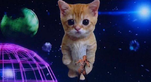 VIDÉO : Myley Cyrus aux American Music Awards...avec un chat !