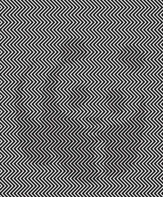 ¿Eres capaz de ver lo que se esconde detrás de esta extraña imagen?