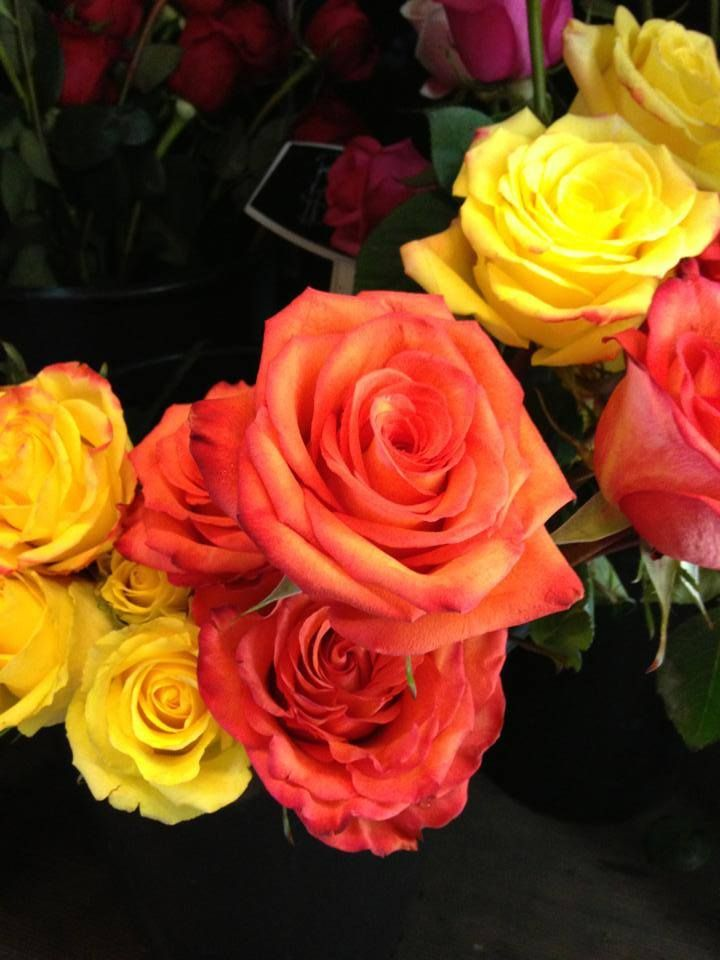 Global Petals High U0026 Orange And High U0026 Yellow Magics Are The Top Fall  Wedding Flowers