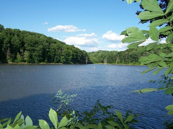 Homes For Sale Near Salt Fork Lake Ohio