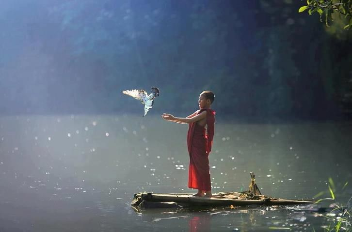 The art of knowing is knowing what to ignore. — Rumi:
