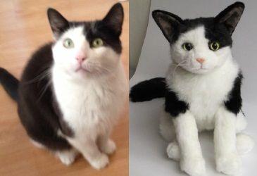 Custom Made Cat Stuffed Animals
