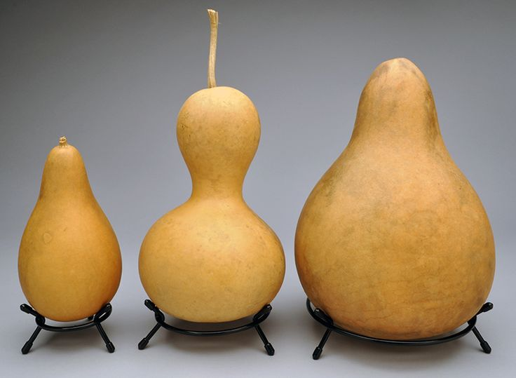 Metal Gourd Stands