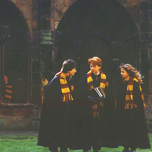 """Ron and Hermione's expressions make me think that they're thinking """"Harry, you're absolutely bonkers."""" :)"""