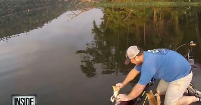 Πήγε για ψάρεμα και έπιασε… γάτες!