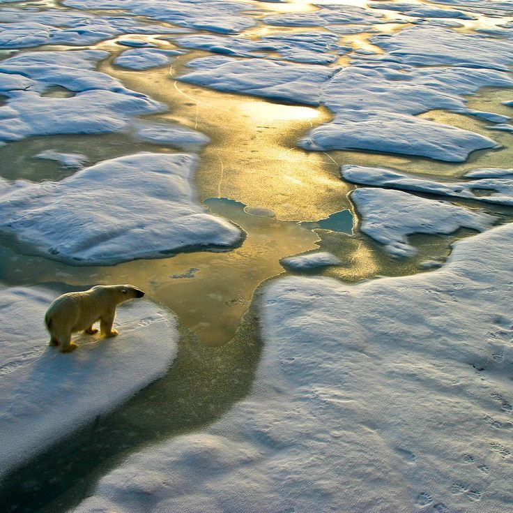 How to Address the Climate Change Debate in Your Classroom