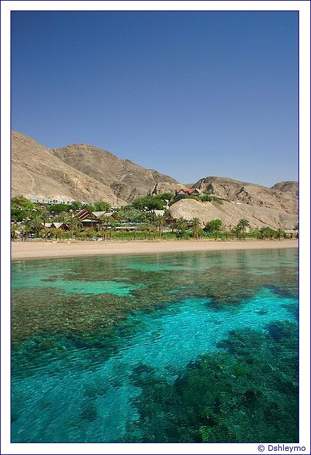 Utopia - Eilat. Home sweet home!
