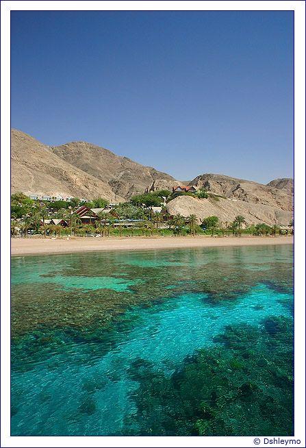 Utopia - Eilat. Home sweet home!