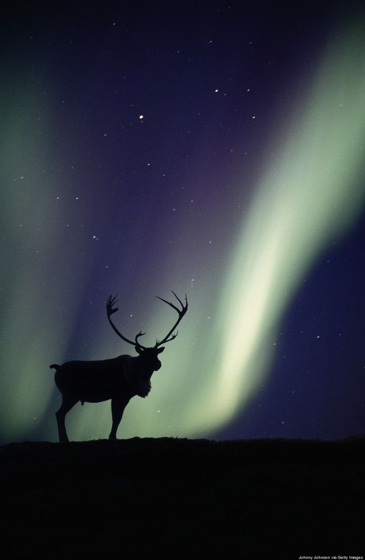 ~~55 Years Ago, Alaska Became the 49th State   Aurora Borealis by Johnny Johnson~~