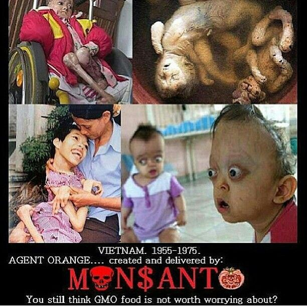 Monsanto, the same company who put out Agent Orange, and they are creating food thru GMO :( but no labels!