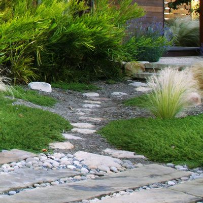 Low Water Garden Design lush low water mediterranean style garden shirley bovshow eden makers blog by shirley bovshow 7 Smart Ideas For A Low Water Yard
