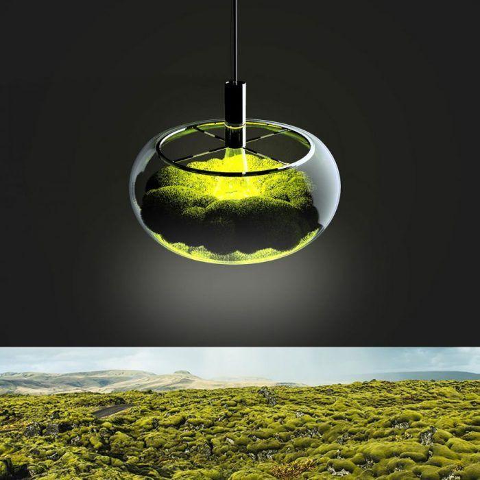 Marko Vuckovic – Mosslamp #lamp #nature #industrialdesign #design