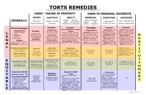 Torts Remedies - Remedies Big Picture - Bar Exam Study Materials