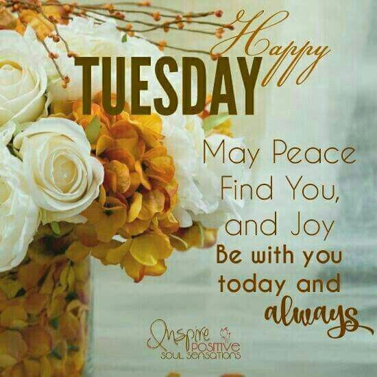 Happy Tuesday, May Peace Find You And Joy tuesday tuesday quotes happy tuesday tuesday pictures tuesday images