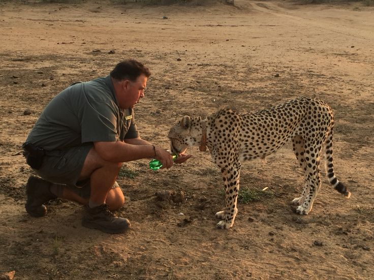 Private Southern Africa 'Safari with a difference'