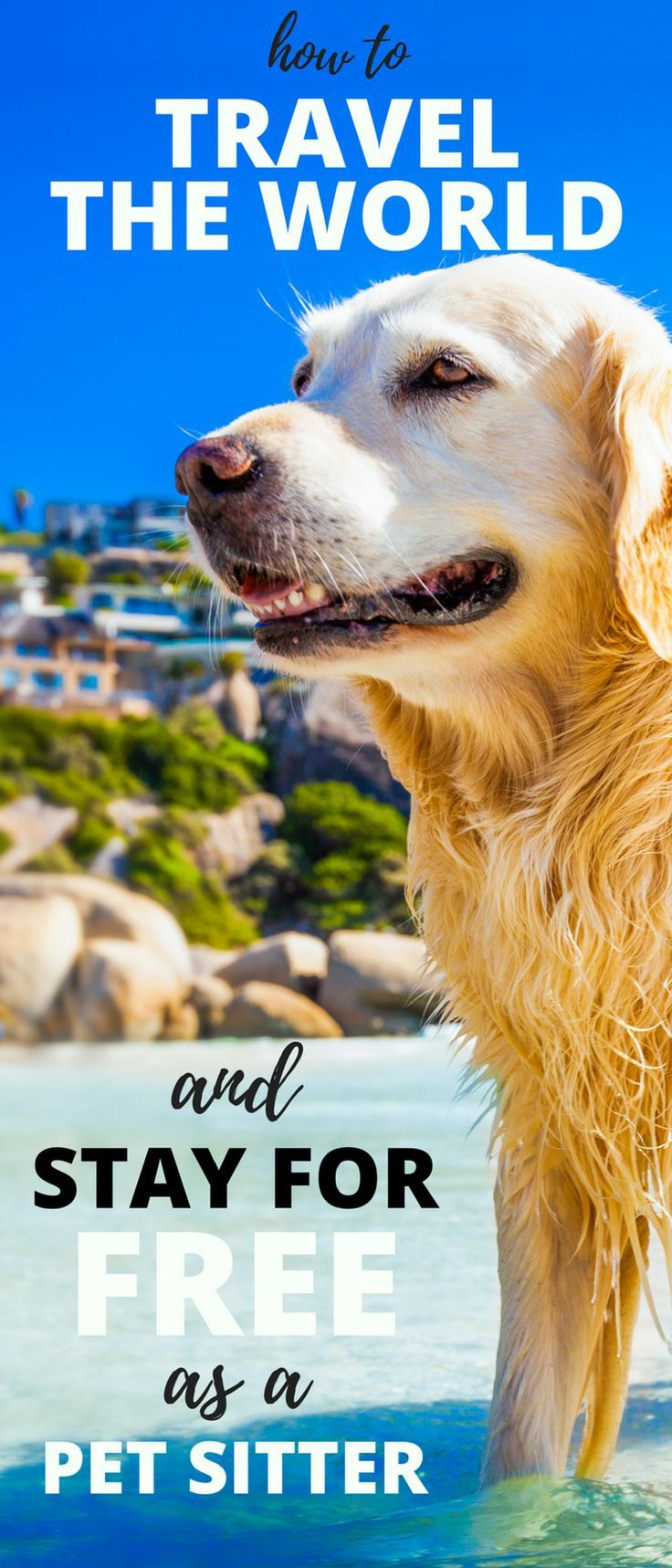 Are you a pet lover who loves to travel, but money has been holding you back from jet-setting? Learn how you can travel with a free place to stay by becoming a traveling pet sitter with Trusted House Sitters. (afflink)