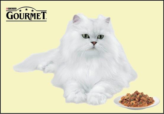 Stiti care este secretul unei pisici fericite?  Multa dragoste si hrana potrivita. Mie imi place sa ma rasfat si de aceea prefer GOURMET Gold: mousse delicat, cubutele de carne in sos, double pleasure sau terina.  Postat de Ducesa