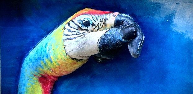 Macaw hand animal by 100percenthandmad on Etsy