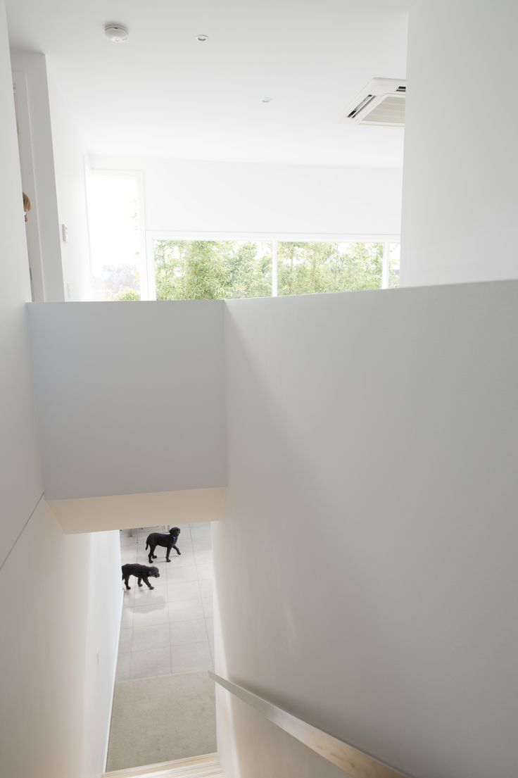 When designing homes, we consider the space needed for all members of your family, whether two-legged or four!