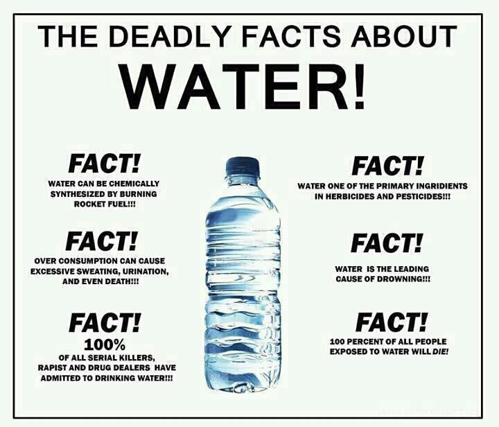 ...: Laughing, Funny Pics, Dead Water, Funny Stuff, Water Facts, Humor, Funnystuff, Drinks Water, Dead Facts