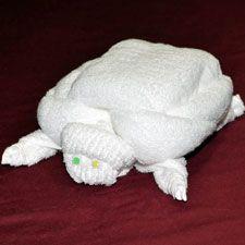 #AustraliaDayOnboard turtle towel