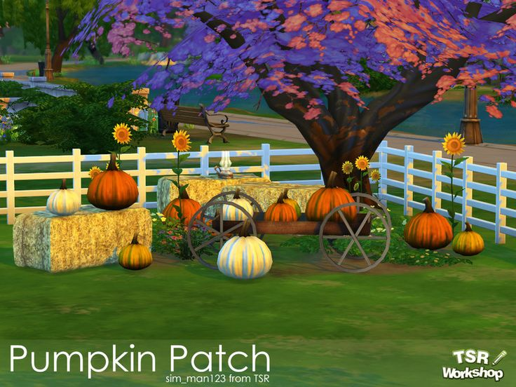 Backyard Pumpkin Patch Party : The Sims 4  simman123 Pumpkin Patch Set  buy mode new objects deco