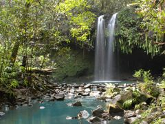 Road to Hana Rainforest Hike & Waterfall Swim (Easy to Moderate) photos, Maui tours & activities, fun things to do in Maui | HawaiiActivitie...
