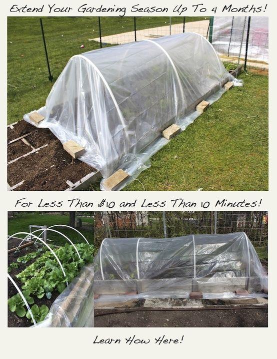 I'm definitely trying this one. Super easy! | greengardenblog.comgreengardenblog.com