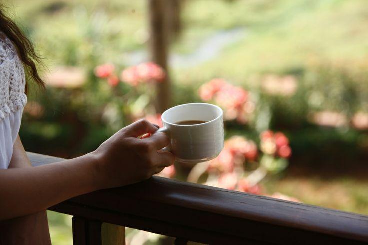 A warm cup of Tea while overlooking a beautiful garden #AlilaDiwa #Goa