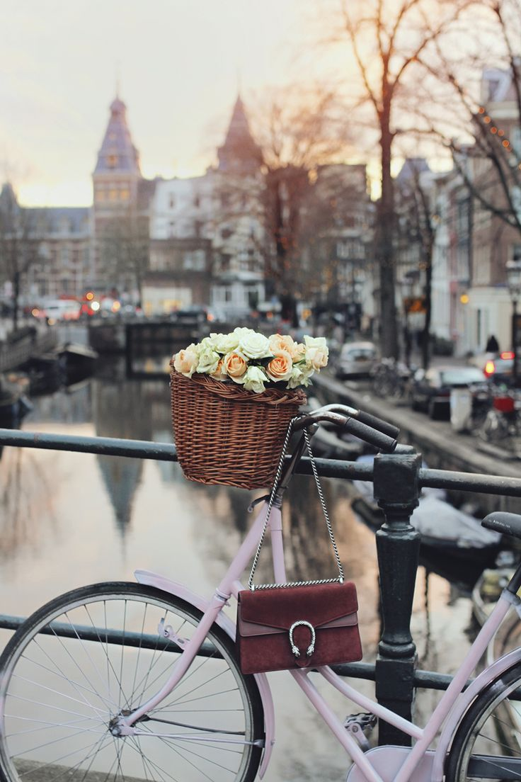 amsterdam bike pink travel tips canals roses gucci cute best hotspots