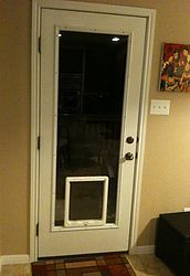 Best 25 door glass inserts ideas on pinterest diy - Interior door with pet door installed ...