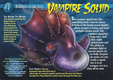 Vampire Squid front