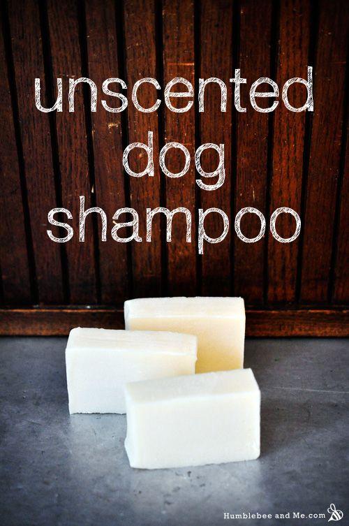 Pooch 'Poo Unscented Dog Shampoo Recipe
