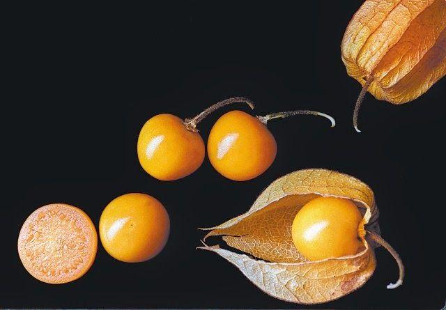 """Hoy te queremos invitar a degustar nuestra infusión """"CAPRICHO DE MANGO Y UCHUVA"""" con mango, uchuva, Pera, uvas pasas, breva, cáscaras de mandarina, botones de rosa amarillos, pétalos de caléndula, y vainilla. Entra en http://www.namaste-guadalajara.com/mezclas-frutales/101-capricho-de-mango-y-uchuva-.html y descubre nuestras más de cien variedades de té, rooibos, infusiones y café, ven a conocernos en la C/ San Roque 17 – 19002 – Guadalajara – España, y te invitaremos a degustar nuestro té"""