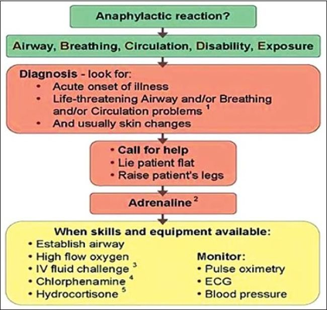 How to recognise the symptoms of Anaphylaxis shock