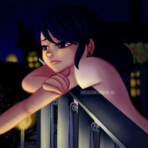 1000 Images About Miraculous Marinette Dupain Cheng On