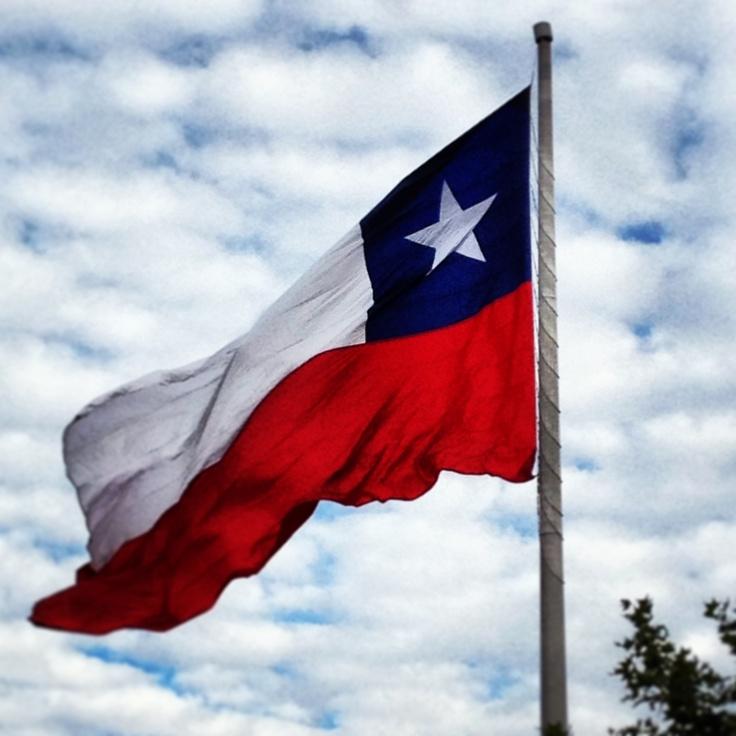 Bandera chilena/Chilean flag